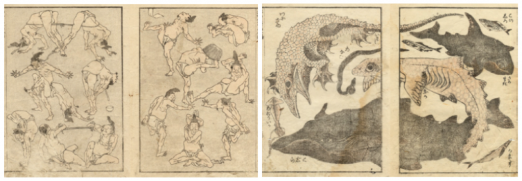Figure 1. Hokusai Manga, First and Second Series (Ota Memorial Museum of Art, 2013)