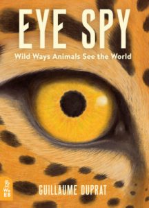 Book Cover for Eye Spy using black and yellow orange tones features an up close look at a cheetah eye.