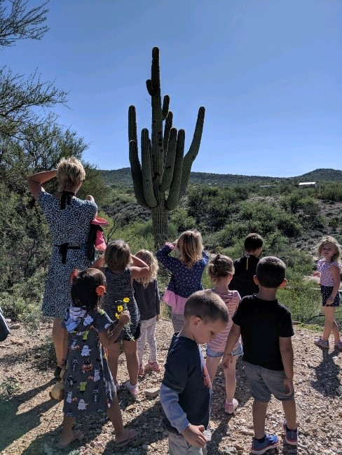 Students studying the saguaro cactus near our playground.