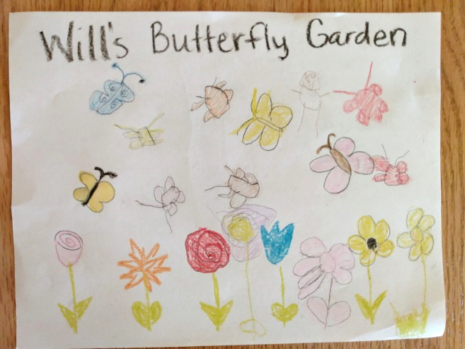 Will's idea sketch for a butterfly garden.