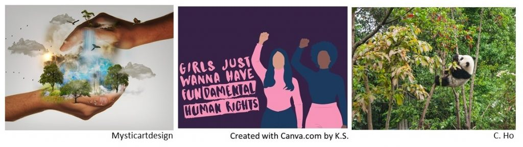 Image 1: Mysticartdesign's image of hands cupping a verdant cityscape from above and below, K.S.'s Canva design in purple tones two women with fists up and the text Girls Just Want to Have FUNdamental Human Rights, and C. Ho's image of a panda among trees.